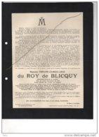 Du Roy De Blicquy Fernand Lieutenant Général Camp Du Roi ° 1836+18/9/1913 Boitsfort Van De Branden De Reeth Hannis De Mo - Esquela