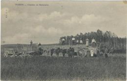 51  Muizon Chantier De Betteraves - France