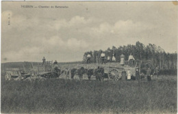 51  Muizon Chantier De Betteraves - Otros Municipios