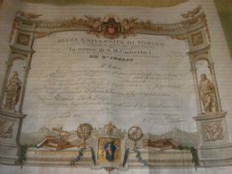 DIPLOMA DI LAUREA REGIA UNIVERSITA' DI TORINO 1888 - Diplome Und Schulzeugnisse