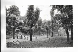 94 - MAISON SAINT-JOSEPH - CACHAN - Enfants De L' école Dans Le Parc - Cachan