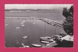83 - BANDOL - Vue Sur Le Port Et La Rade - Bandol
