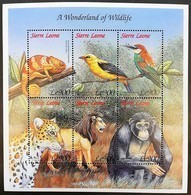 Sierra Leone 1999** Mi.3235-40 Wildlife , MNH [3;60] - Sonstige