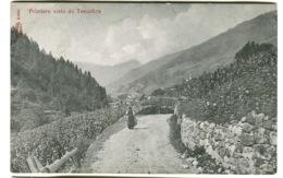 PRIMIERO Visto Da TOMADICO C, 1908 - Trento