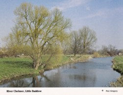 AM56 River Chelmer, Little Baddow - England