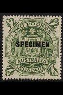 "1948 £2 Green ""Arms""SG 224d, Ovptd ""Specimen"", Fine Never Hinged Mint. For More Images, Please Visit Http://www.sandaf - Unclassified"