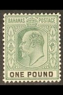 1902 KEVII £1 Green & Black, SG 70, Very Fine, Lightly Hinged Mint For More Images, Please Visit Http://www.sandafayre.c - Bahamas (...-1973)