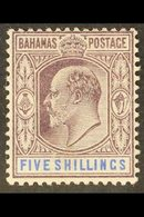 1902 KEVII 5s Dull Purple & Blue, SG 69, Very Fine Mint For More Images, Please Visit Http://www.sandafayre.com/itemdeta - Bahamas (...-1973)
