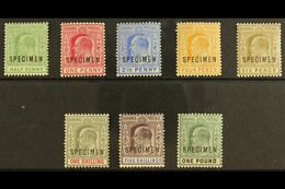 """1902-06 Ed VII Set To £1 Plus 1906 ½d Green, Overprinted """"Specimen"""", SG 62s-70s, 71s, Very Fine And Fresh Mint. (8 Stamp - Bahamas (...-1973)"""