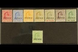 """1902-06 SPECIMEN SETS KEVII 1902 Definitive """"SPECIMEN"""" Opt'd Complete Set, SG 62s/70s & 1906 ½d """"SPECIMEN"""", SG 71s, Fine - Bahamas (...-1973)"""