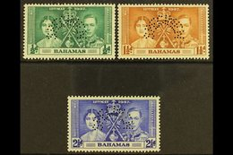 """1937 Coronation Set Complete, Perforated """"Specimen"""", SG 146s/8s, Very Fine Mint, Large Part Og. (3 Stamps) For More Imag - Bahamas (...-1973)"""