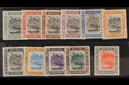 1907-10 Complete Hut Set, SG 23/33, Very Fine Mint. (11 Stamps) For More Images, Please Visit Http://www.sandafayre.com/ - Brunei (...-1984)