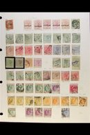1880-2012 EXTENSIVE COLLECTION A Mint & Used Collection Presented In An Album With Often Duplicated Ranges Up To KGVI Th - Cyprus