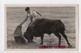 CORRIDA - Tauromachie - Matador DAMASO GOMEZ - Arênes Du Bouscat - Corrida