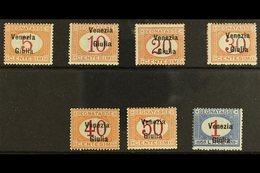 VENEZIA GIULIA POSTAGE DUES 1918 Overprint Set Complete, Sass S4, Very Fine Never Hinged Mint. Cat €2500 (£1900) Rare Se - Italy