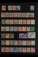 NEGRI SEMBILAN 1891-1961 USED COLLECTION On Stock Pages, All Different, Includes 1891 2c Opt, 1891-94 Tiger Set, 1895-99 - Great Britain (former Colonies & Protectorates)
