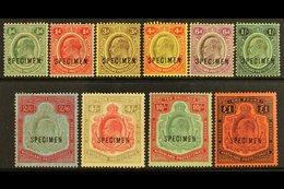 """1908 Definitives Set Complete Overprinted """"SPECIMEN"""", SG 59s/66s, Fresh Mint (10 Stamps) For More Images, Please Visit H - Nyassaland (1907-1953)"""