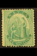 1862 1s Green On Greyish Paper, SG 4, Mint With Large Part Gum, A Couple Of Shorter Perfs. For More Images, Please Visit - St.Christopher-Nevis-Anguilla (...-1980)
