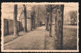 TURNHOUT  H.GRAF  ST.AGNESSCHOOL - Turnhout