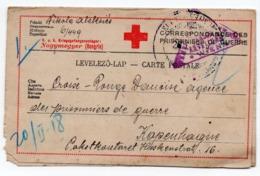 01.01.1918,  WWI, HUNGARY, CENSORED IN VIENNA, AUSTRIA, POW CARD TO COPENHAGEN, RED CROSS, DANISH AGENCY - Interi Postali