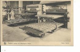 Tournai  Intérieur De La   Boulangerie L'Avenir - Doornik