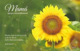 CUBA -  (PAP) Entier Postaux - Mother'a Day - Cuba - Mother's Day