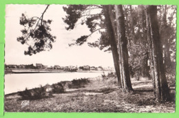 CAPBRETON / UN COIN DE LA FORÊT ET LE CANAL .....Carte écrite En 1951 - Andere Gemeenten