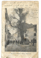 ROCCAFORTE MONDOVI PIAZZA MUNICIPALE 1908 CPA 2 SCANS - Cuneo