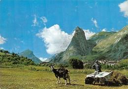 Cartolina Chiappera Valle Maira Panorama Parziale Animata - Cuneo
