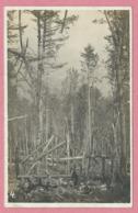 68 - HARTMANNSWEILERKOPF - VIEIL ARMAND - Carte Photo - Drahseilbahn - Téléphérique Militaire  - Guerre 14/18 - France