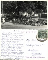 East Pakistan, Bangladesh, Market Scene, Melon Seller (1970) RPPC Postcard - Bangladesh