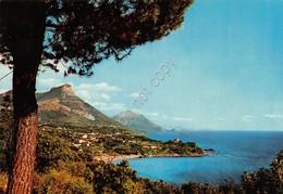 Cartolina Maratea La Costa - Potenza