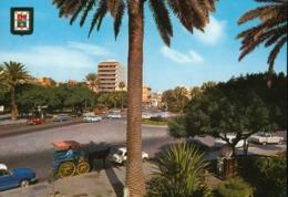 Spain - Gran Canaria - Las Palmas - Puerto De La Luz - Santa Catalina Park - Gran Canaria