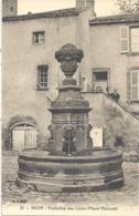 CPA Riom Fontaine Des Lions - Riom