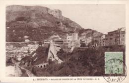 Monaco - Palais Du Prince Et La Tête De Chien - Prince's Palace
