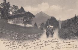SWITZERLAND-SCHWEIZ-SUISSE-SVIZZERA-POSTE SUISSE-CARTOLINA VIAGGIATA IL 12-9-1904 - VS Valais