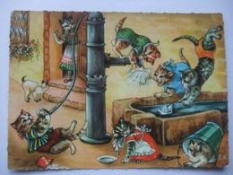 N23 Ansichtkaart Kattenfamilie (4) - Chats