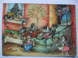 N23 Ansichtkaart Kattenfamilie (5) - Chats