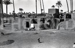 1961 EGYPT ARABIC REGION  AMATEUR 35mm ORIGINAL NEGATIVE Not PHOTO No FOTO - Photography