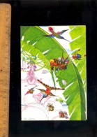 Guyane : Illustration Felix Lorioux Dessin Peinture Oiseaux - Cayenne