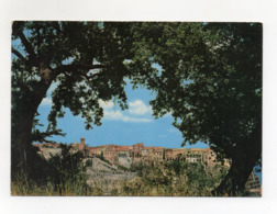 Tropea (Vibo Valentia) - Panorama - Viaggiata Nel 1978 - (FDC17768) - Vibo Valentia