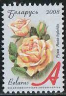 Belarus 2008 Yv. N°628 - Rose - Oblitéré - Belarus