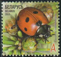 Belarus 2015 Yv. N°903 - Coccinelle - Oblitéré - Belarus