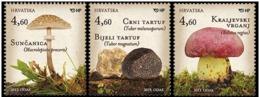 24.- CROATIA CROATIE 2013 Mushrooms 2013 - Hongos