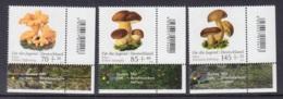 26.- GERMANY MUSHROOMS CHAMPINGNONS FUNGI SETAS MICOLY MICOLOGIA - Hongos