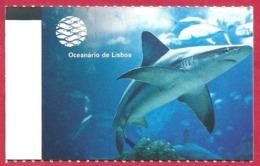 Ticket De L'aquarium De Lisbonne. Portugal. Visuel: Un Requin. 2019. - Tickets D'entrée