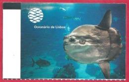 Ticket De L'aquarium De Lisbonne. Portugal. Visuel: Un Poisson Lune Ou Môle. 2019. - Tickets D'entrée