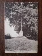 L19/794 ANTULLY - La Croix Des Tilleuls - France