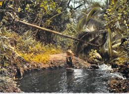 @ Polynésie Française- TAHITI Sous Bois Polynésien (2) (Vahiné Nu Nue Seins Nus)  (LABAYSSE La Baysse N°101)*PRIX  FIXE - Polynésie Française