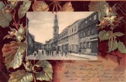 ERLANGEN GERMANY~HAUPTSTRASSE-1902 POSTMARK-ORNATE BOTANICAL BORDER POSTCARD 42076 - Erlangen